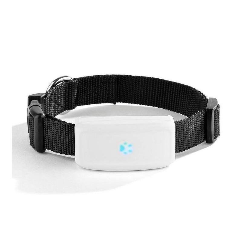 BENTECH A700 GPS nyomkövető kutyáknak