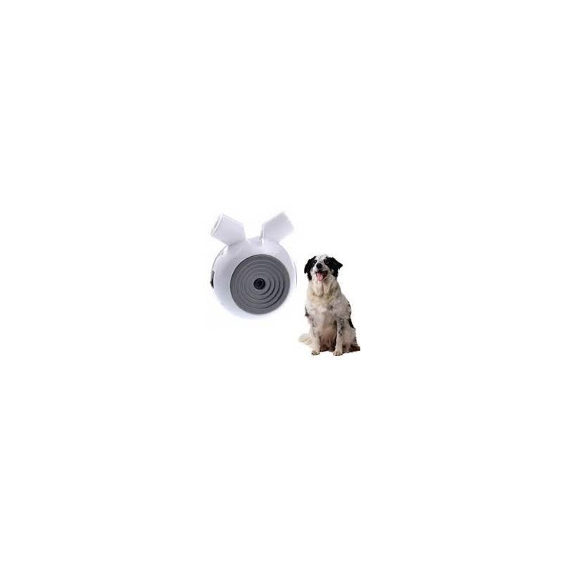 https://www.elektromos-nyakorv.hu/511-thickbox_default/hd-kamera-kutyaknak-bentech.jpg