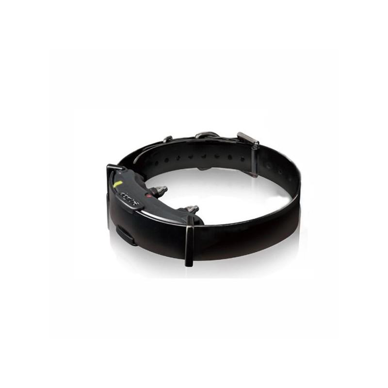 Vevő Dogtra ARC 800 nyakörvhöz